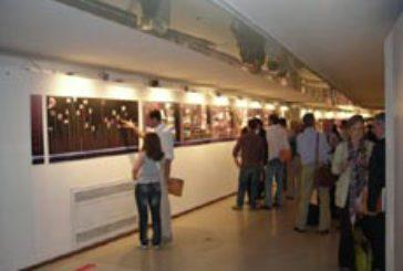 Urbino, oltre 140 mila visitatori per mostra Raffaello