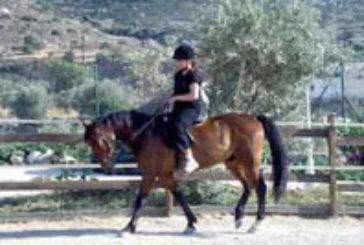 A Fieracavalli la Sardegna punta sull'ippovia