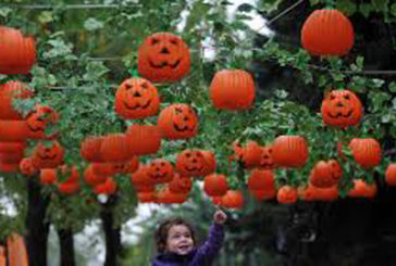 Streghe, scope volanti e fantasmi, Leolandia si prepara all'HalLEOween