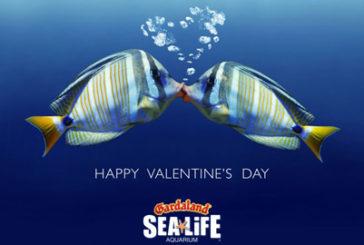 Gardaland, iniziative speciali per San Valentino e Carnevale
