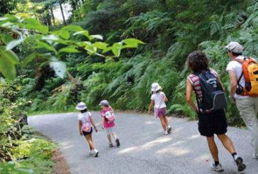 'Piemonte Outdoor Commission', piattaforma per promuovere turismo e sport all'aria aperta