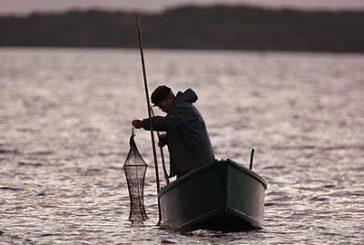 Dipartimento Pesca, incontri calendarizzati con i beneficiari del Feamp l'1 ottobre