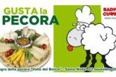A Santa Ninfa una sagra celebra la tradizione contadina e… la pecora