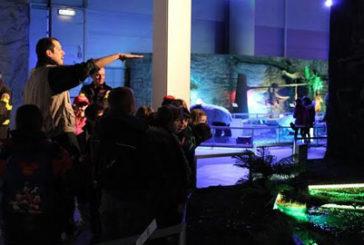 Aperture straordinarie a carnevale per la mostra Days of Dinosaur