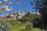 Agrigento cerca hotel per oltre mille ospiti internazionali del Mandorlo in Fiore