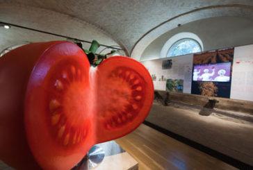 Pomodoro protagonista del Tomaca Fest 2016