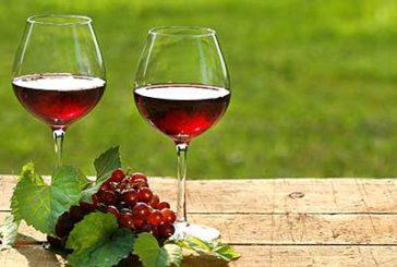 I vini abruzzesi si gustano sulla Transiberiana d'Italia con il 'Treno del Vino'