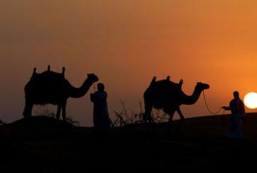 Ecco gli Emirati Arabi di Evolution Travel