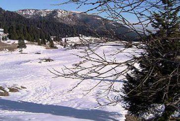 In Trentino sotto accusa il turismo per velocità propagazione del virus