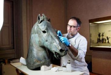 La 'Testa di cavallo' di Donatello al MANN