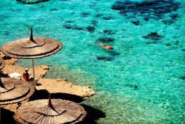 Evolution Travel, in ripresa i viaggi verso il Mar Rosso