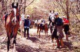 A Staffoli trekking a cavallo in stile western in mezzo alla natura
