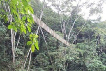 In Colombia crolla ponte pieno turisti. Il bilancio è di 7 morti e 14 feriti