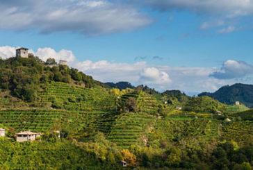 Unesco, Italia invia candidatura paesaggio Prosecco