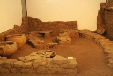 Museo Archeologico Ibleo a rischio chiusura? Al via la mobilitazione