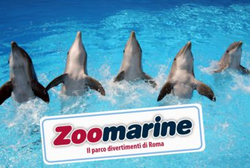 Zoomarine in nomination ai Parksmania Awards 2019