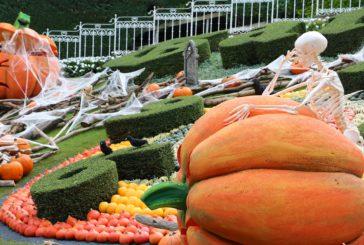 Ci saranno zucche e streghe al Gardaland Magic Halloween