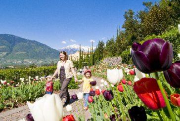 Il 30 marzo riaprono i Giardini di Sissi tra nuovi percorsi e la fioritura di 300 mila bulbi