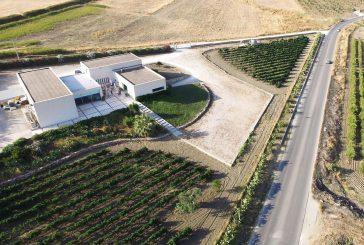 Menfi, le Cantine Barbera aprono tra vini e cucina regionale italiana