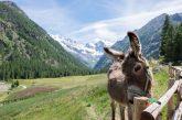 Gal VdA presenta bando per sviluppo turismo, dotazione di 1,4 milioni