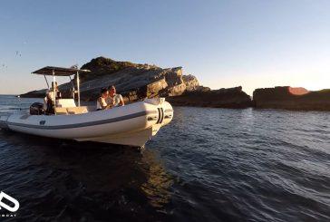 HopHop Boat consolida partnership con le adv per nuovi tour nel Golfo di La Spezia
