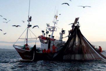 Il mondo della pesca inverte la rotta, boom di domande per i bandi del Fondo Ue
