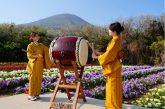 Primavera a Tokyo tra colori, natura e tradizioni