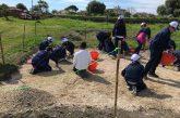 Eventi formato famiglia tra gli scavi di Naxos