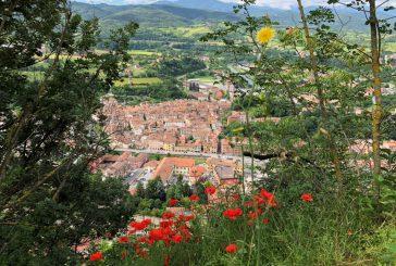 In treno storico da Torino a Ceva: riparte la stagione turistica della Ferrovia del Tanaro