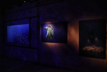 Archeologia subacquea in mostra al Castello di Baia