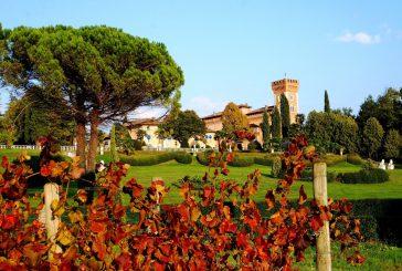 Al Castello di Spessa per ammirare i colori del foliage e gustare i sapori dell'autunno