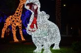 A Natale Gaeta si illumina con le 'favole di luce'