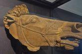 La Sicilia torna da protagonista a Fieracavalli di Verona