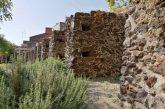 Le vie del verde, così Catania punta al turismo sostenibile