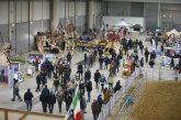 Fiera Roma e Verona insieme per promuovere il comparto equestre