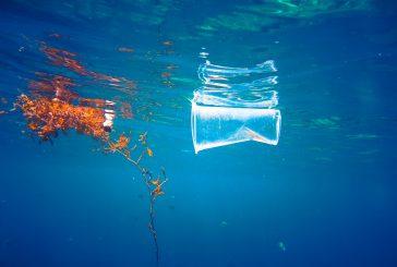 Accor si impegna a eliminare la plastica monouso entro il 2022