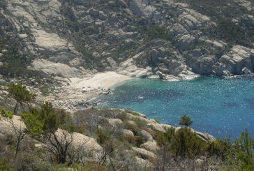 Online il calendario delle visite a numero chiuso all'Isola di Montecristo