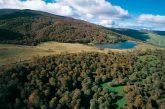 Vertice al Parco dei Nebrodi sul turismo sostenibile