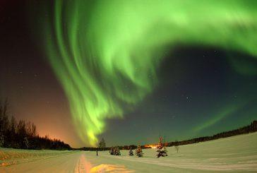 Alaska dagli occhi di ghiaccio: viaggio nello Stato dei record