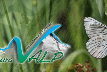 Associazione NaturaValp premiata per promozione sostenibilità