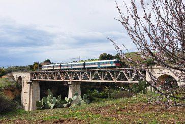 Sui binari torna il treno del Mandorlo in Fiore